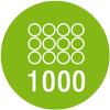 Количество пружин в двуспальном матрасе: - 1000шт.